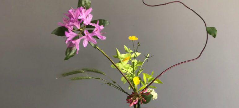 Ikebana là gì? Lịch sự hình thành và phát triển của nghệ thuật cắm hoa Nhật Bản